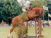 Showjumping Insurance from Millins Chartered Insurance Brokers