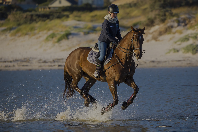 horse riding on the beach - horsebox insurance