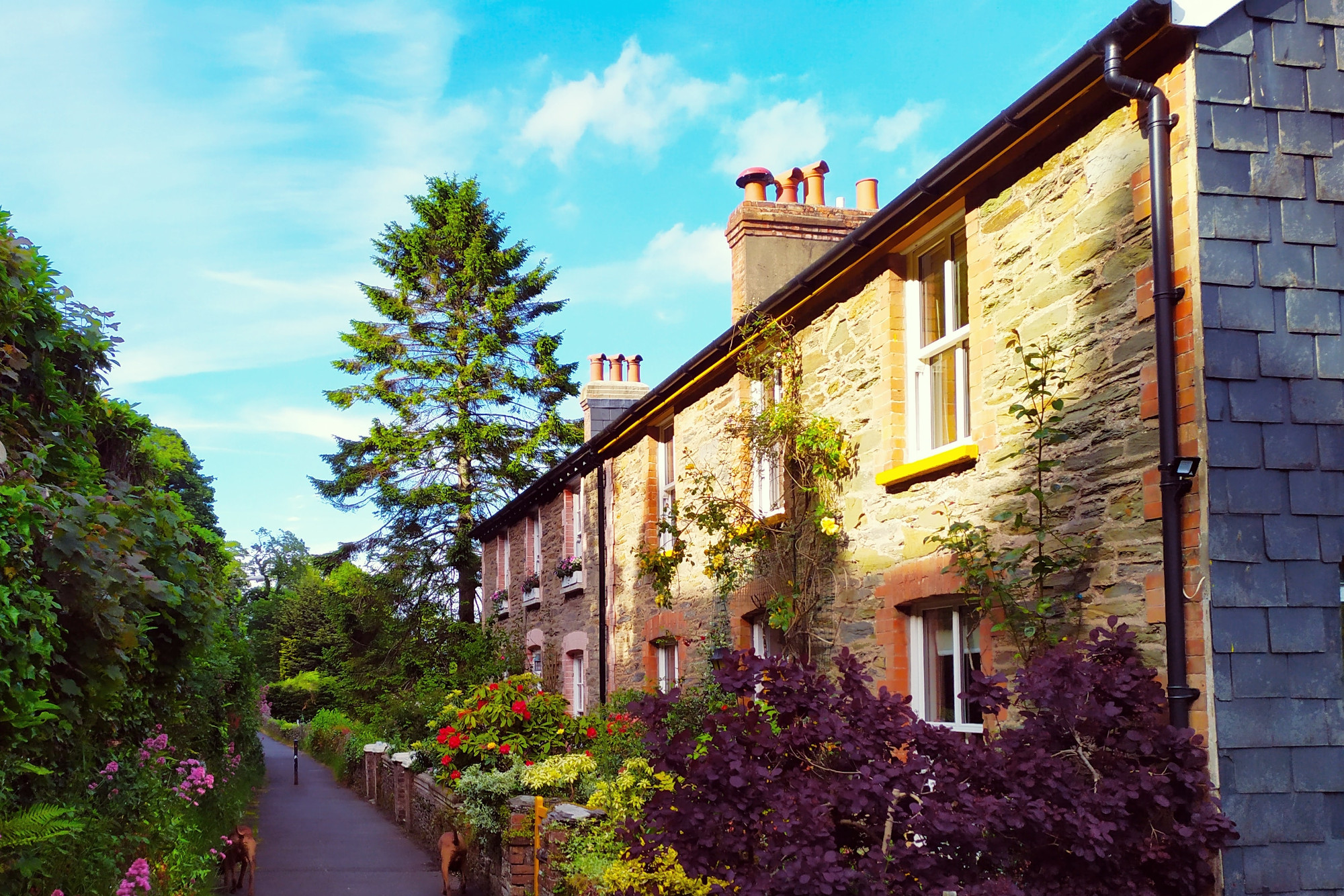 Row of sunlit cottages : Personal & Home Insurance from Millins Chartered Insurance Brokers